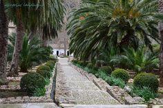 Jardines de Alfabia und Port de Soller ~ Allegrias Landhaus