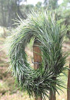 ۞ Welcoming Wreaths ۞ DIY home decor wreath ideas - Wreath Crafts, Diy Wreath, Wreath Ideas, Christmas Wreaths, Christmas Decorations, Holiday Decor, Yule, Diy Hairstyles, Floral Arrangements