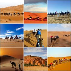 Discern Luxury #MoroccoDayTours Throughout Your Excursions In Morocco. For more info visit @ https://goo.gl/vJMV29