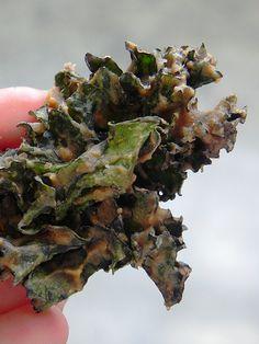 Apple Cinnamon Kale Chips