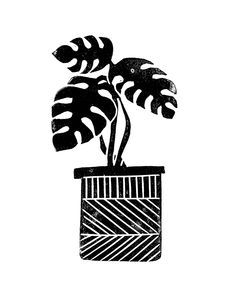 Linocut Cheese Plant Monstera Tropical Leaf Lino Print Black And White Illustration Art Home Dorm Couch Throw Pillow by Monoo - Cover x with pillow insert - Indoor Pillow Lino Art, Dorm Art, Cheese Plant, Leaf Illustration, White Plants, Black And White Canvas, Poster S, Black And White Illustration, Jolie Photo