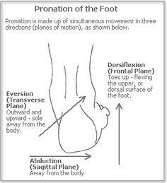 Pronation of the foot explained Fitness Nutrition, Health And Nutrition, Sagittal Plane, Progress Report, Medical Humor, Muscle Tissue, Massage Therapy, Physical Therapy, Pediatrics