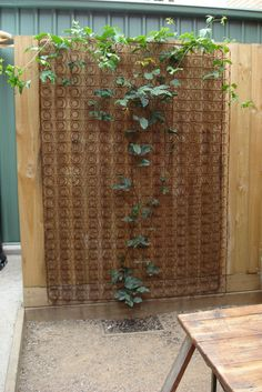 bed springs trellis.. never would have thought of that
