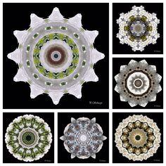 Mandalamix  kreativesbypetra Petra, Decorative Plates, Mandala, Brooch, Jewelry, Home Decor, Jewlery, Decoration Home, Jewerly