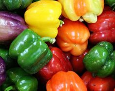 """Brighten up your summer salads with Mini Belle Pepper Mix. A medley of adorable dwarf sized bell peppers that will decorate your garden in chromatic array. Tiny peppers ripen into hues ranging from cherry red, orange and green to luminous yellows. Will fit nicely into small garden spaces and patio planters. Germination 5 to 10 days, sowing depth 1/8"""", space plants 18 to 24"""" apart. Grows 16 to 24 tall. Full sun. Harvest in 60 days. 10 seeds.  Photos are of our plants grown on our farm!  All…"""