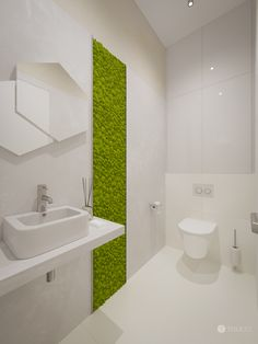 Toaleta s machovou stenou Steyr, Bratislava, Bathtub, Bathroom, Standing Bath, Bath Room, Bath Tub, Bathrooms, Bathtubs