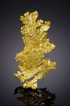 Native Gold - Colorado Quartz Mine, Mariposa Co., California, USA Size: x x cm Minerals And Gemstones, Crystals Minerals, Rocks And Minerals, Stones And Crystals, Gold Bullion Bars, Gold Prospecting, Beautiful Rocks, Mineral Stone, Rocks And Gems