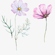 розовый росписью цветы, розовый, вектор, цветыPNG и вектор