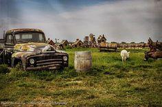 Country Photography Farmhouse Decor Donkeys by APCphotocreations, $30.00