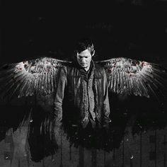 » Reminiscent « The Walking Dead 〓 Daryl Dixon X Reader - Chapter 19: Final Goodbyes - Wattpad
