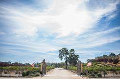 sculpterra winery in paso robles - Santa Barbara, San Luis Obispo, Los Angeles, San Diego and Orange County Wedding Photographer