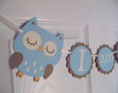 "BOY Owl high chair banner ""I am 1""  Hayley Wise Owl Collection, BOY birthday. first birthday. owl decorations, owl birthday. owl theme"