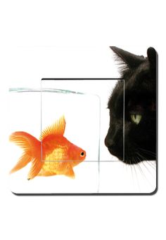 Interrupteurs décorés chat et poisson rouge