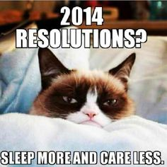 Grumpy Cat 2014 resolutions Grumpy Cat Quotes #GrumpyCat #Meme #Humor