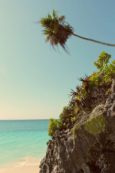 / Quintana Roo aka Playa del Carmen, Mexico (click through to read more)