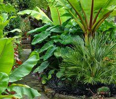 Front yard gardening ideas
