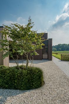 Make concepts Tuinarchitectuur in alle eenvoud by Kevin Mampay backyardlandscapedesign is part of Modern landscape design - Modern Landscape Design, Modern Garden Design, Contemporary Garden, Landscape Plans, Garden Landscape Design, Modern Landscaping, Front Yard Landscaping, Backyard Landscaping, Landscaping Design