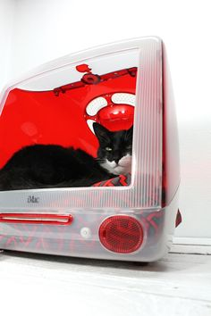 Upcycled Apple Computer Pet Bed - Great for the computer programming cat in your life and gives an extra life to aging electronics.