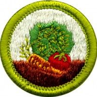 the game design merit badge for boy scouts was released on march 6 2013 this badge give scouts. Black Bedroom Furniture Sets. Home Design Ideas