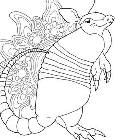 Armadillo Coloring Page. Markers Also Work On This Beast! Donu0027t You Love