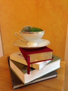 Teacup Terrarium - Live Moss Arrangement in Cup & Saucer