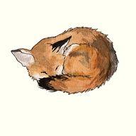 sleeping fox tattoo - Google Search