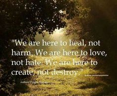 We are here to heal, not to harm. We are here to love, not hate. We are here to create, not destroy.