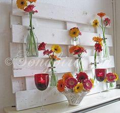 11 paleta súper veraniego sí crean ideas en el jardín: