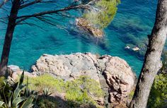 Costa Brava, Spain. day, week hikes along the coast with hotels or camping right along the trail. hop in the ocean. kayak snorkel dive. great food. the new Tuscany.