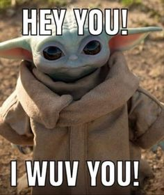 Funny Picture Quotes, Funny Sayings, Funny Pictures, Funny Memes, Yoda Meme, Yoda Funny, Cute Funny Animals, Funny Cute, Yoda Images