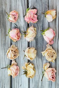 Dried roses. #flowers