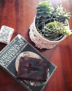 Succulents arrangiament green composition in ceramica Bassano pot