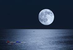 Vollmond über der Adria Luna piena sopra l'Adriatico  #adria #mare #adriatico #meer #sea #mond #moon #luna #nacht #night #notte  www.bereit-videofilm.de