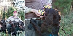 Photo Credit: Lissa Gotwals. Garden & Guns magazine, April/May 2013-Boykin Spaniels, and turtle concervation.