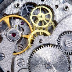 cog/gears