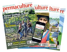Permaculture - practical solutions beyond sustainability
