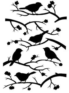 Birds on limbs