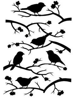 Birds on limbs