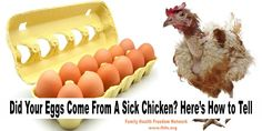 How to determine if an egg comes from a sick chicken