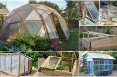DIY Greenhouses