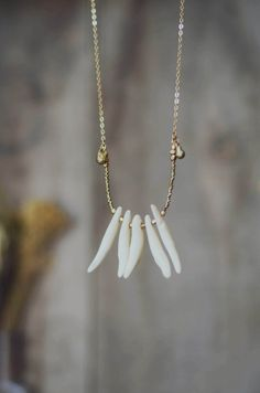 Coyote Bone Necklace by BrianneCossette on Etsy, $50.00