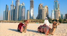 The best time to visit & The East is from November to March. During the months, the city sees blue and primo beach weather. Beach Weather, Travel Design, Travel Agency, Luxury Travel, Time Travel, Camel, Tourism, The Incredibles, City