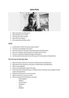 """Sylvia Plath's """"The Arrival of the Bee Box"""" PowerPoint and Worksheets for Irish Language Class - PowerPoint focuses on imagery. The worksheet contains short questions. Suitable for Ordinary Level Leaving Cert Irish students. The Arrival, Irish Language, Bee Boxes, World Languages, Writing Skills, Learning Spanish, Study Tips, Student Learning, Teaching Resources"""