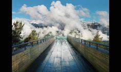 Artful Integrations that Elevate Nature - http://blacklemag.com/design/natural-installations/