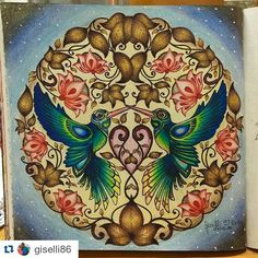 Olha que lindo! By @giselli86 with @repostapp ・・・#desenhoscolorir Para marcar minha volta aos lápis! #jardimsecreto #johannabasford #secretgarden