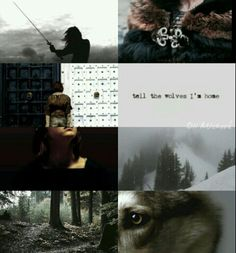 Arya Stark aesthetics by me