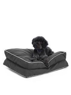 Gusset Bed by Waggo at Gilt
