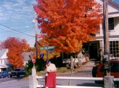 One for the leaf peepers in Vermont,United States.