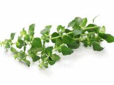 Muesli, Parsley, Spinach, Herbs, Vegetables, Plants, Food, Mint, Diets