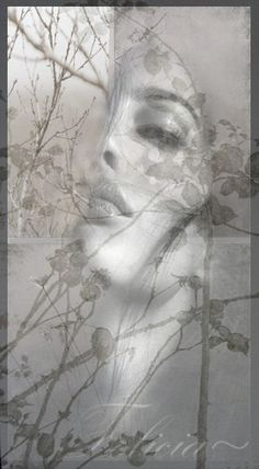 Felicia Sing Me To Sleep, Double Exposure Photography, Lost In Thought, Cute Animal Videos, Black And White Pictures, Felicia, Painting Inspiration, Ethereal, Photo Art